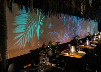 On pénètre dans le restaurant à l'ambiance jungle : lianes et plantes exotiques suspendues au plafond, plantes luminescentes, arbre de vie…